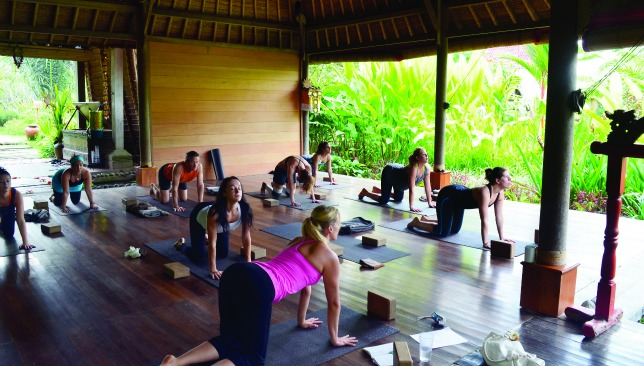 360fit Change Your Life Your Guide To The Best Yoga