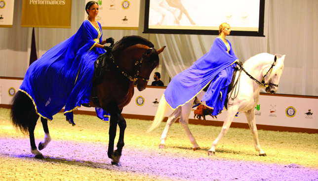 Beautiful breeds: Some of the finest Arabian horse bloodlines will be showcased.