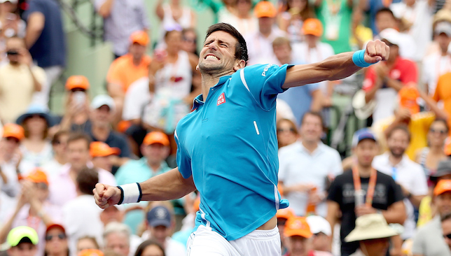 Celebrations: Djokovic.