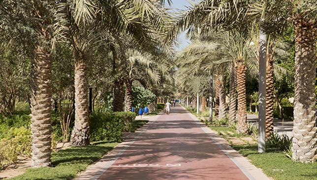 Al Ittihad Park.