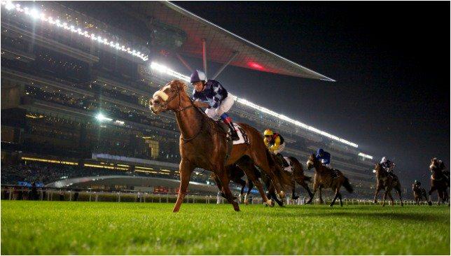 meydan-race-dubai-equestrian (1)