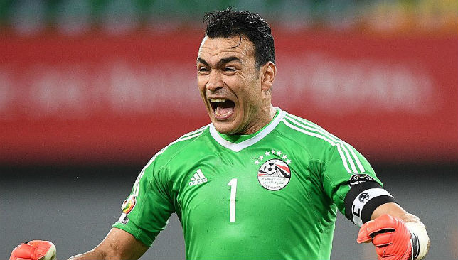 Goalkeeping hero: Essam El-Hadary.