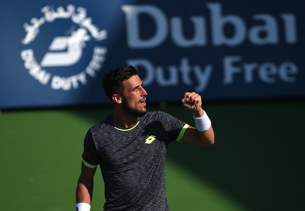 Giant-killer: Damir Dzumhur.
