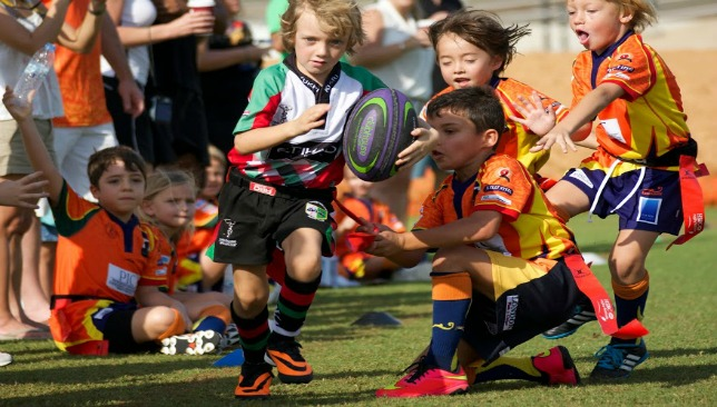 Knights and Sharks' mini and youth teams will still be allowed to train at DSC