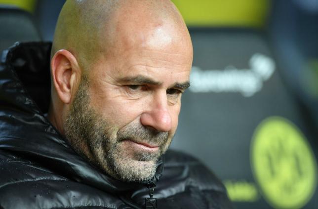 Dortmund sack coach Peter Bosz after terrible run