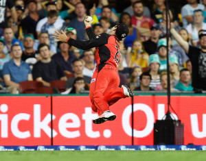 Another stunning catch in the Big Bash