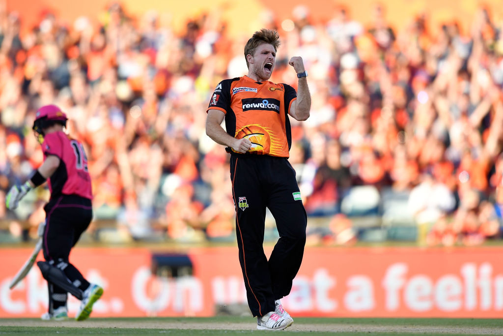 David Willey has been in good form for the Perth Scorchers.