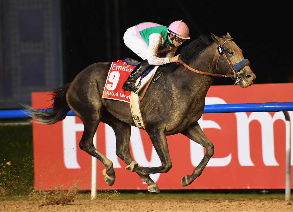 DUBAI, UNITED ARAB EMIRATES - MARCH 25:  Mike Smith riding Arrogate wins the Dubai World Cup Sponsored By Emirates Airline during the Dubai World Cup at the Meydan Racecourse on March 25, 2017 in Dubai, United Arab Emirates.  (Photo by Martin Dokoupil/Getty Images)