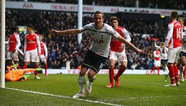 Earning his spurs: Kane has scored 30 Premier League and European goals combined.