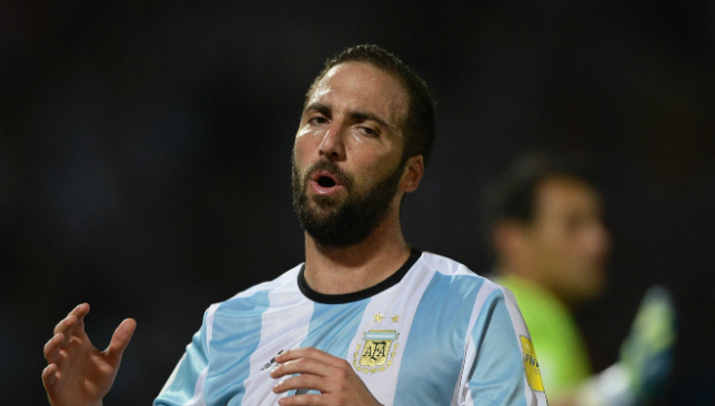 Big expectations: Gonzalo Higuain.