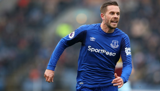 Everton's Gylfi Sigurdsson 'could miss several weeks' with knee injury