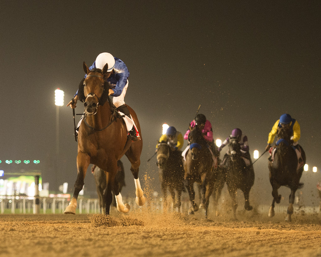 Thunder Snow leads the field in the Dubai World Cup. (Photo by Mathea Kelley/Dubai Racing Club.)