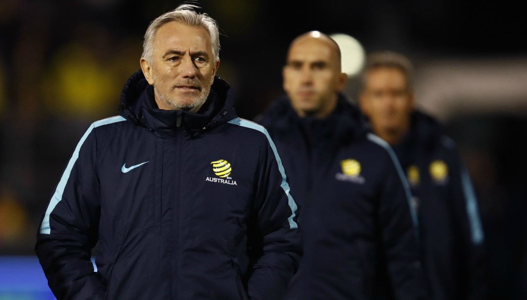 Bert van Marwijk will take charge of the Socceroos for the World Cup.
