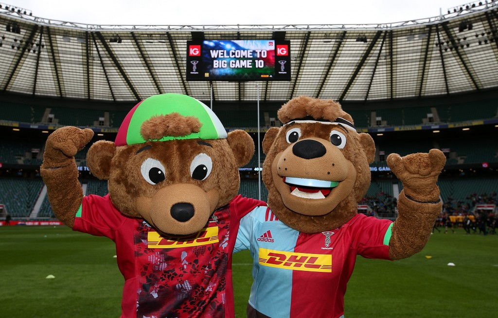 Harlequins mascots are bears, including Harley Bear and Charley Bear.