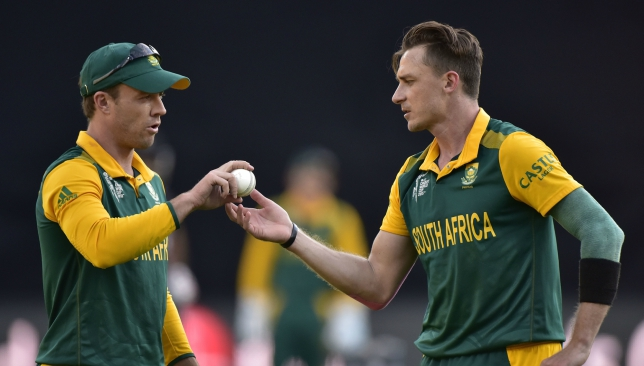Steyn has asked fans to cut ABD some slack for his decision.