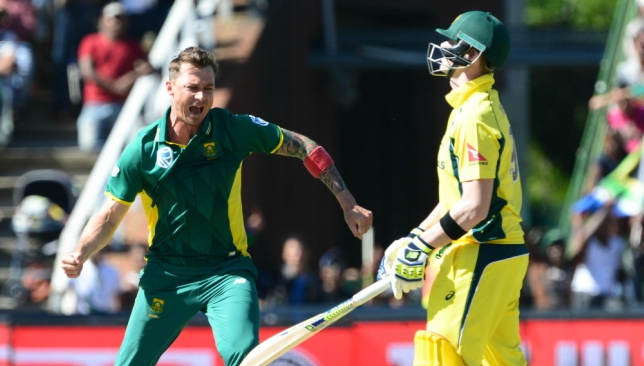 Back after nearly two years: Dale Steyn.