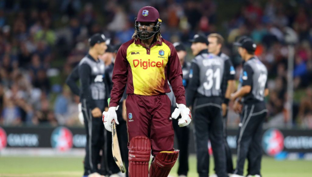 Gayle is being backed to play the 2019 ICC World Cup in England.