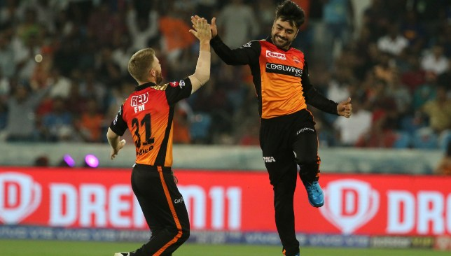 David Warner and Rashid Khan. Image - BCCI/SPORTSZPICS.