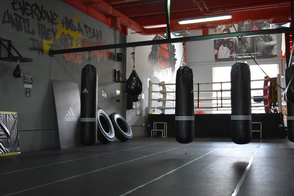 No pain, no gain: Real Boxing Only